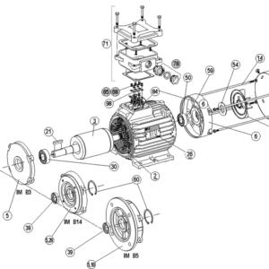 Запасные части асинхронных электродвигателей FLS/FLSC 80-90-100-112-132